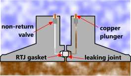 Typical flange leak detection facility